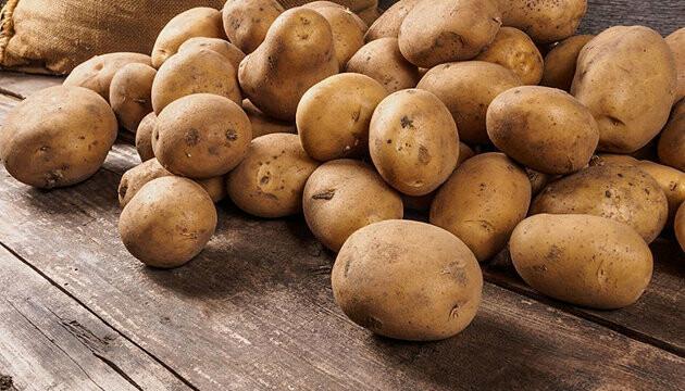 Які овочі  мають цілющій вплив на організм?, фото-7