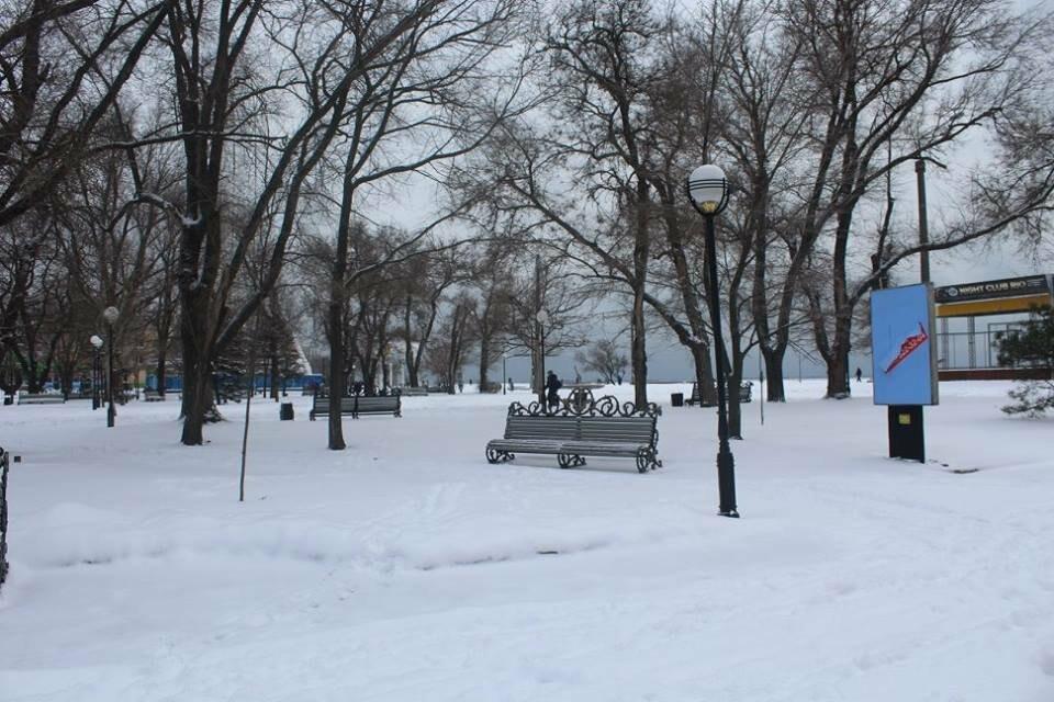В Бердянск пришла настоящая зима (ФОТО), фото-8