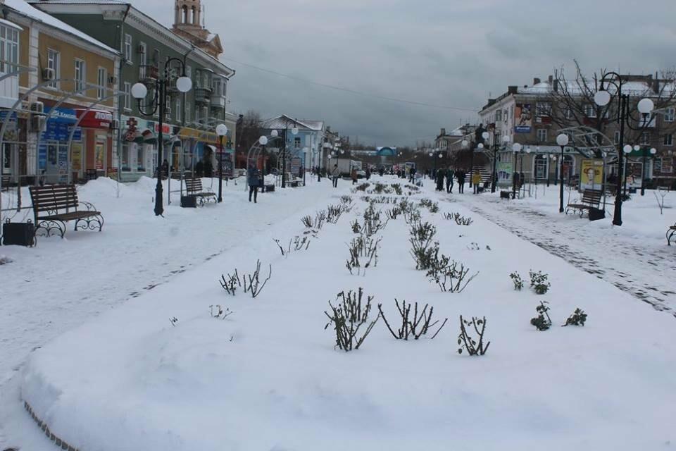 В Бердянск пришла настоящая зима (ФОТО), фото-12