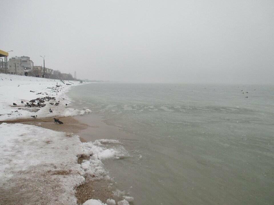Азовское море погрузилось в зимний сон ( ФОТО), фото-2