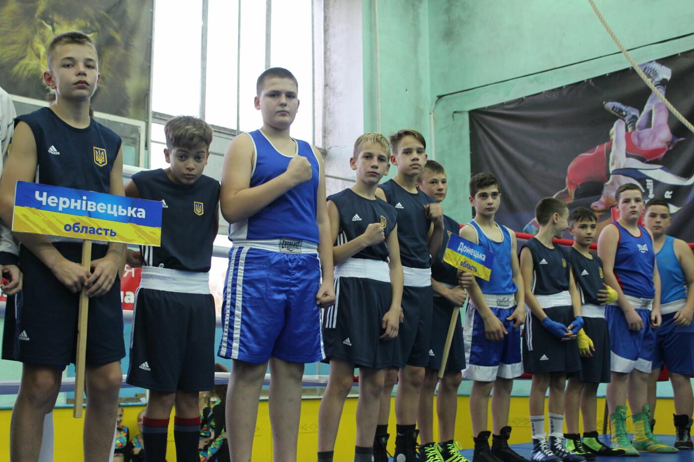 В Бердянске стартовал Чемпионат Украины по боксу (ФОТО), фото-3