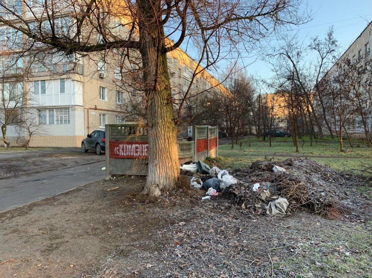 """Позорные пятна Бердянска. Свалка и """"могила лешего"""" (ФОТО), фото-1"""
