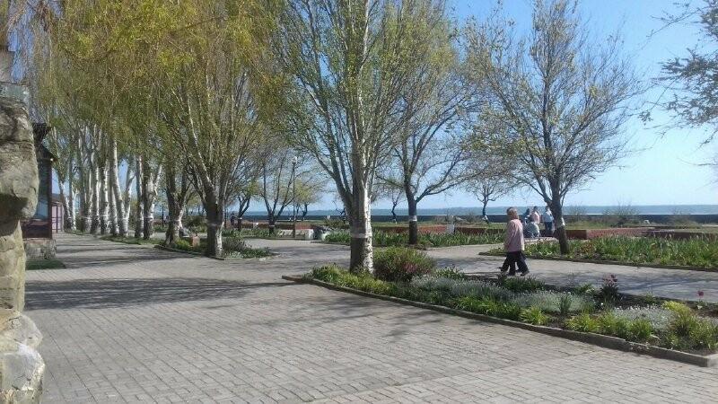 Перше травня в Бердянську, фото-2