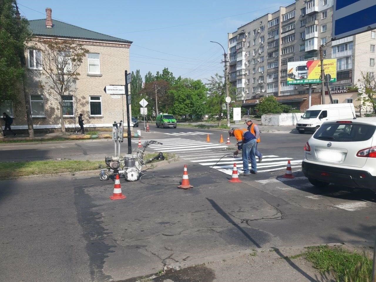 """В Бердянске обновляют пешеходную """"зебру"""", фото-3"""
