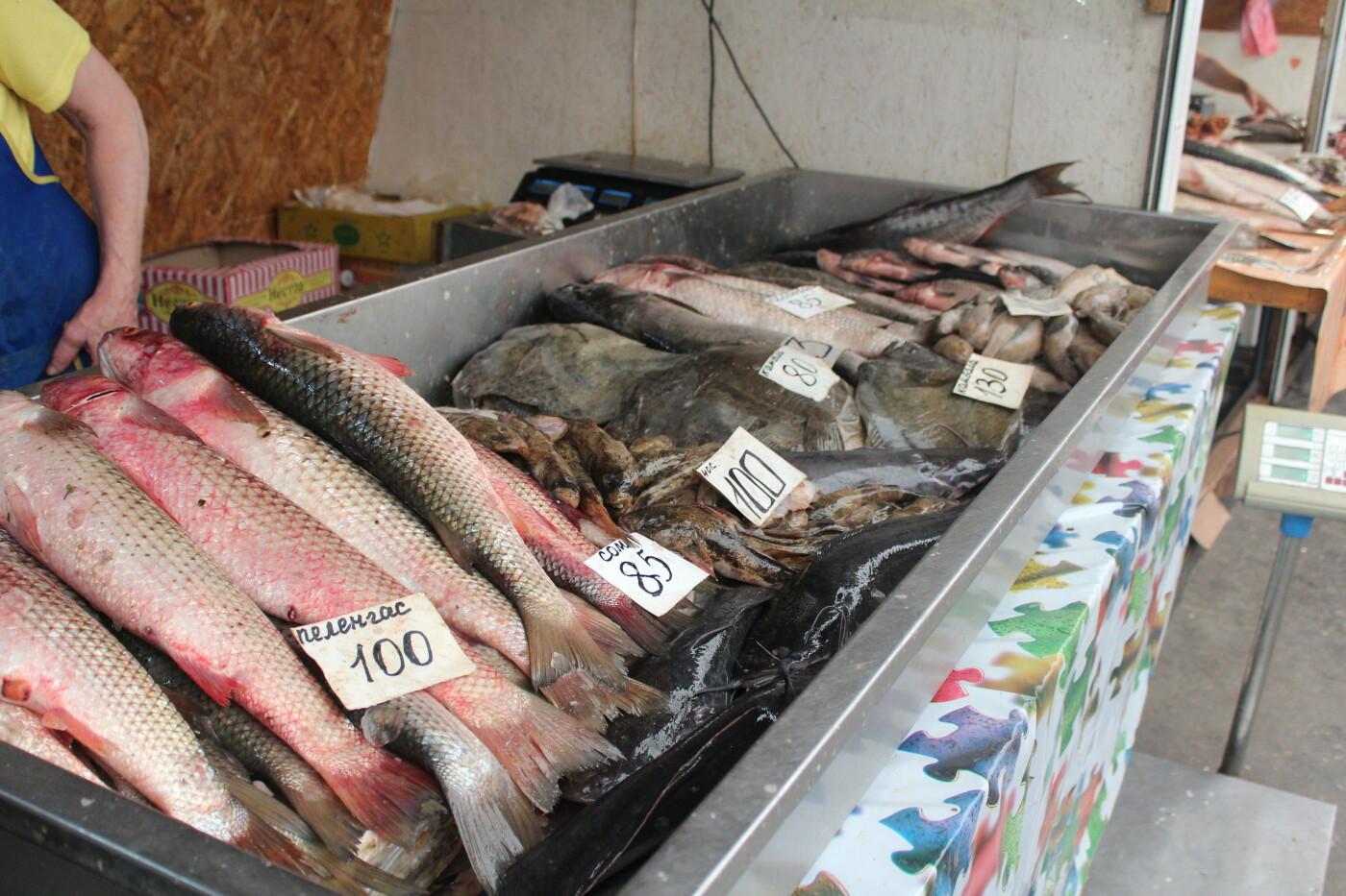 Рыбный четверг: по чем бычок в Бердянске?, фото-6