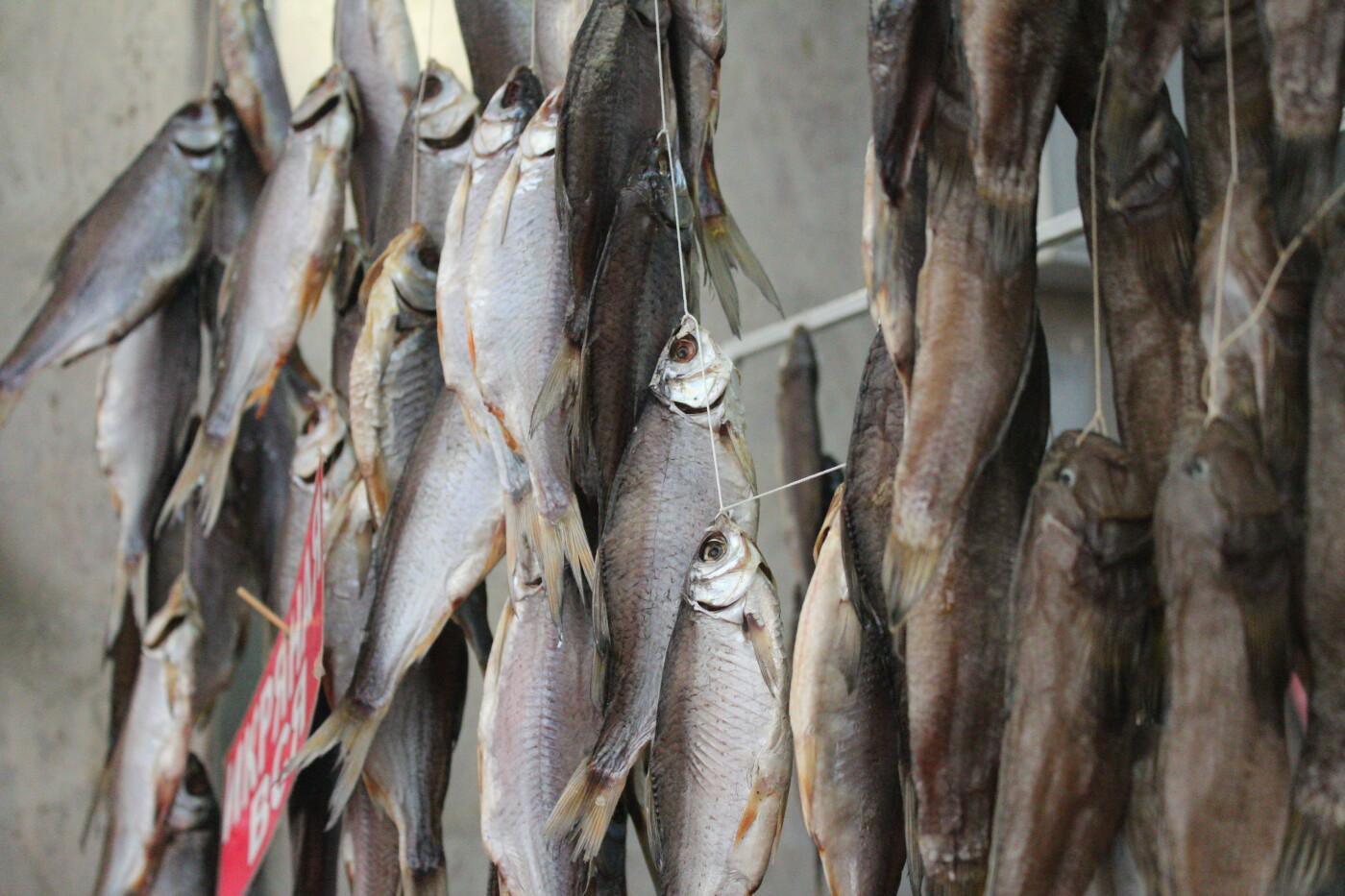 Рыбный четверг: по чем бычок в Бердянске?, фото-24