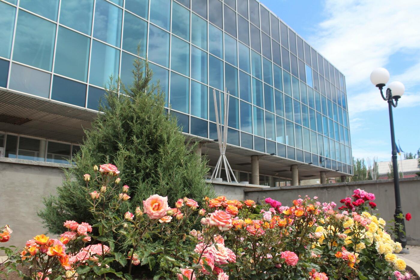 Центр Бердянска цветет и пахнет, фото-2