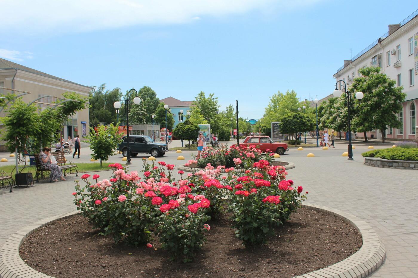 Центр Бердянска цветет и пахнет, фото-9