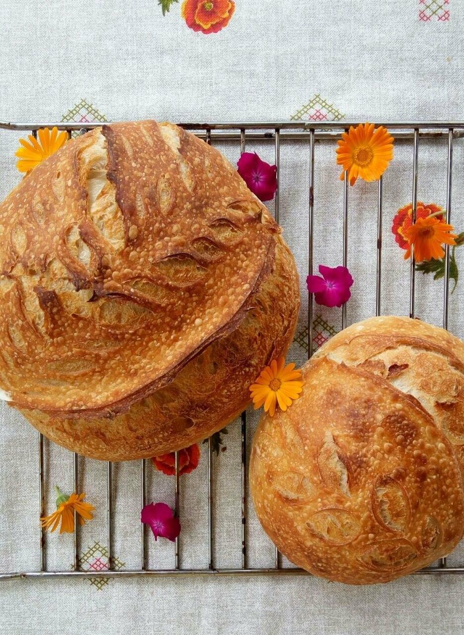 """Вы уже пробовали невероятный хлеб на закваске от бердянской пекарни """"Хлібне місто""""?, фото-8"""