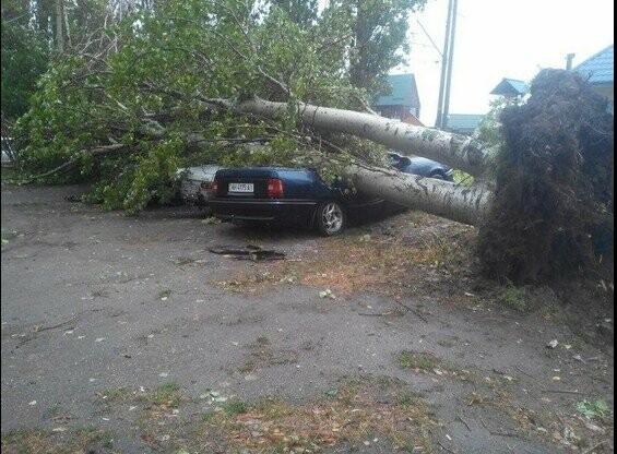 Ровно шесть лет назад ураган в Бердянске разрушил полгорода (фото), фото-5