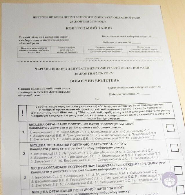 Местные выборы-2020 в Бердянске: новые бюллетени и правила соблюдения адаптивного карантина, фото-2