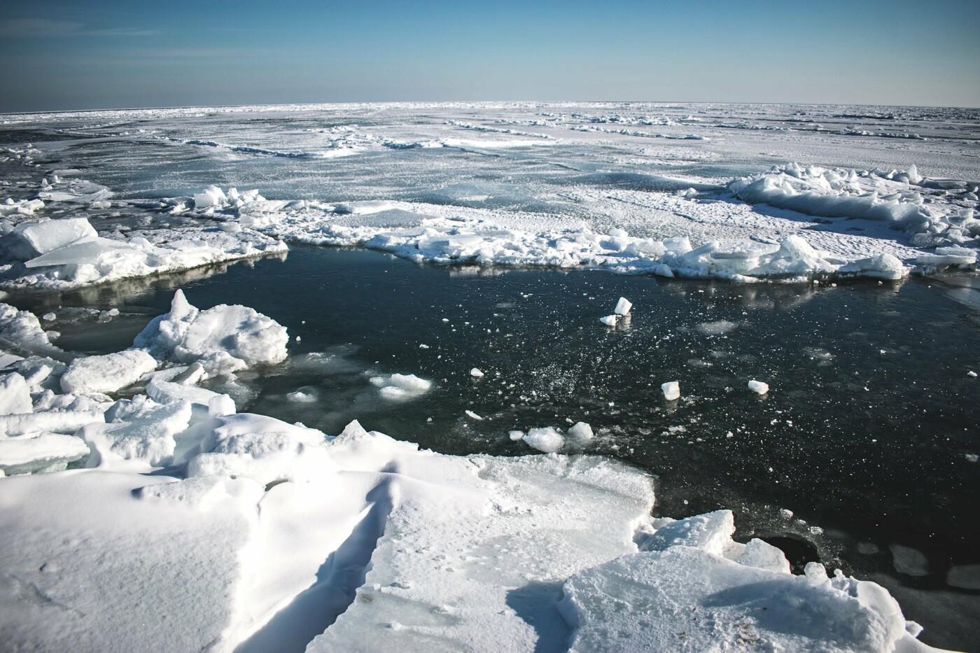 Арктические пейзажи на Бердянской косе (ФОТО, ВИДЕО), фото-5