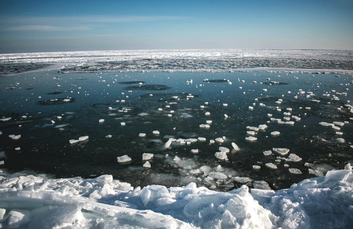 Арктические пейзажи на Бердянской косе (ФОТО, ВИДЕО), фото-6