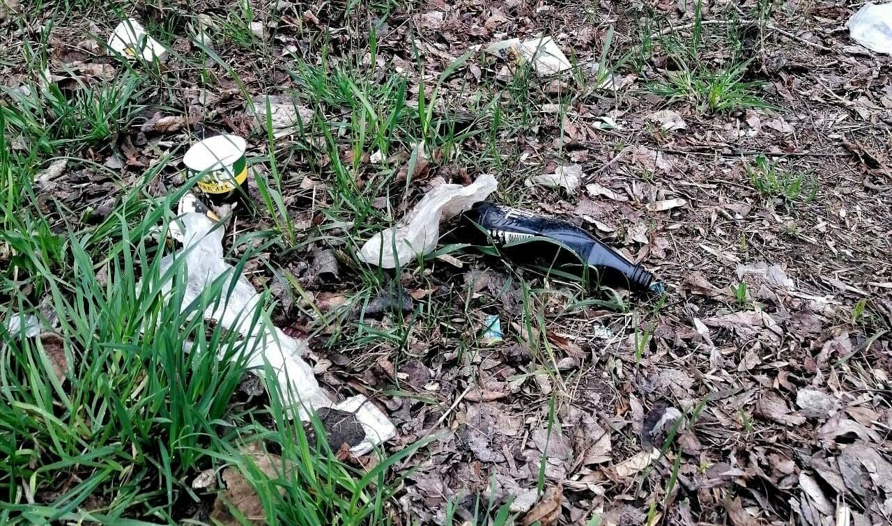 Другой Бердянск: «Здравствуй, мусор!» (ФОТО), фото-7