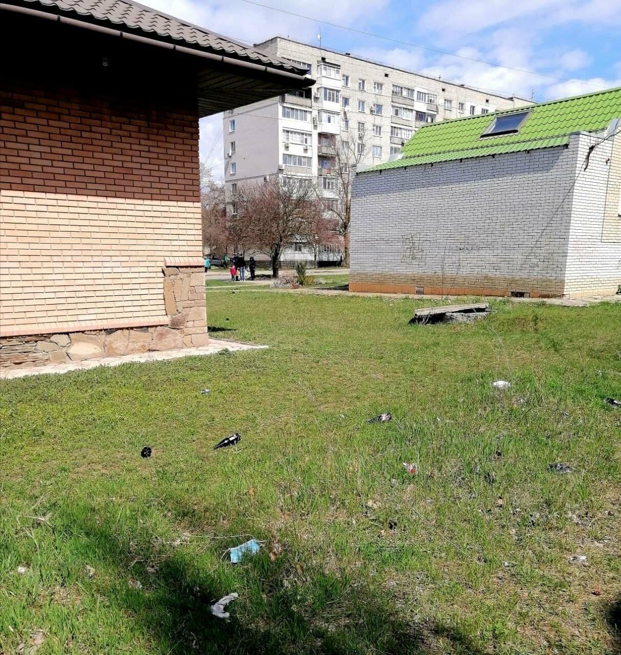 Другой Бердянск: «Здравствуй, мусор!» (ФОТО), фото-2