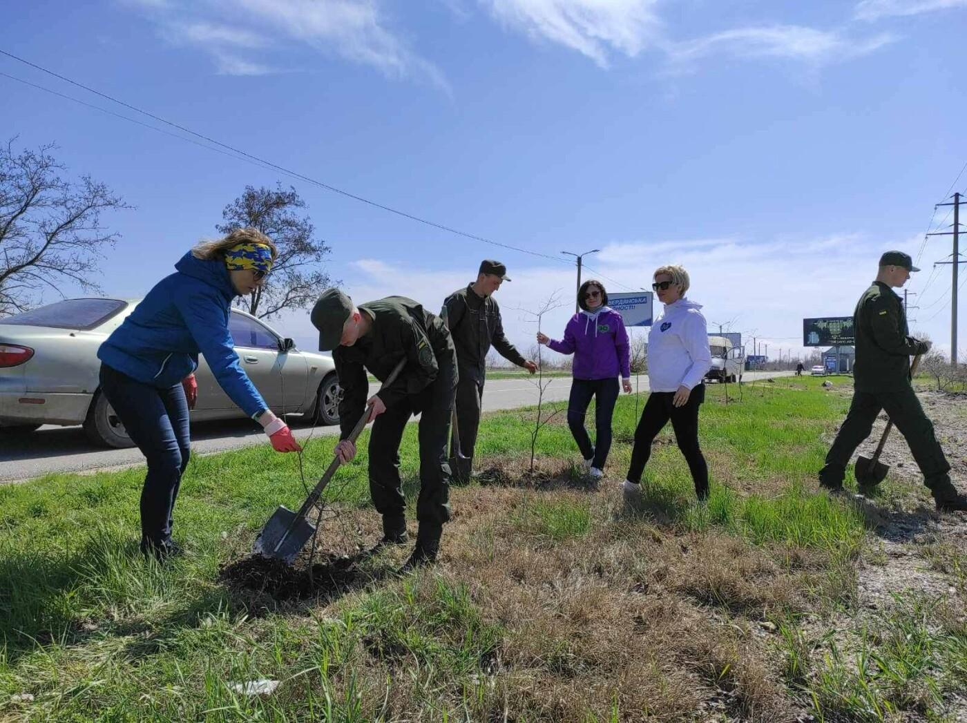 Кто больше: в Бердянске мэр и секретарь горсовета наперегонки сажают деревья, фото-2