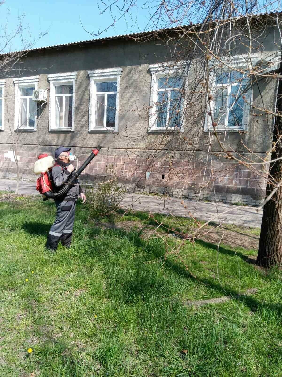 В центре Бердянска начали обрабатывать деревья специальным раствором (ФОТО), фото-1
