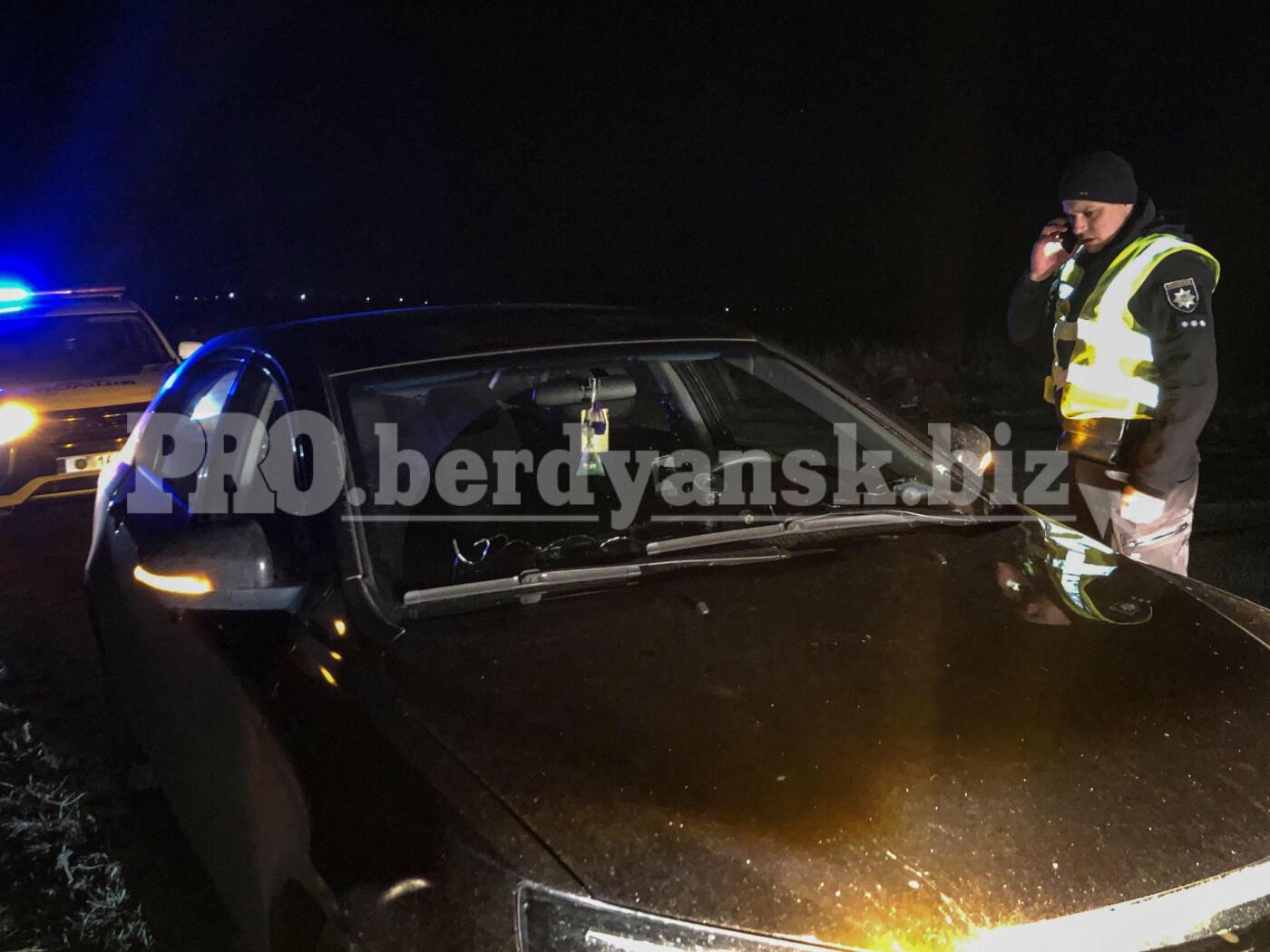 В Бердянске задержан пьяный водитель без прав, фото-1