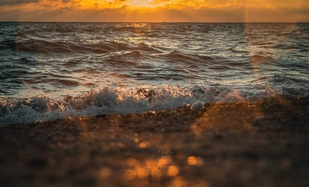 Прекрасний Бердянськ в об'єктиві, фото-1