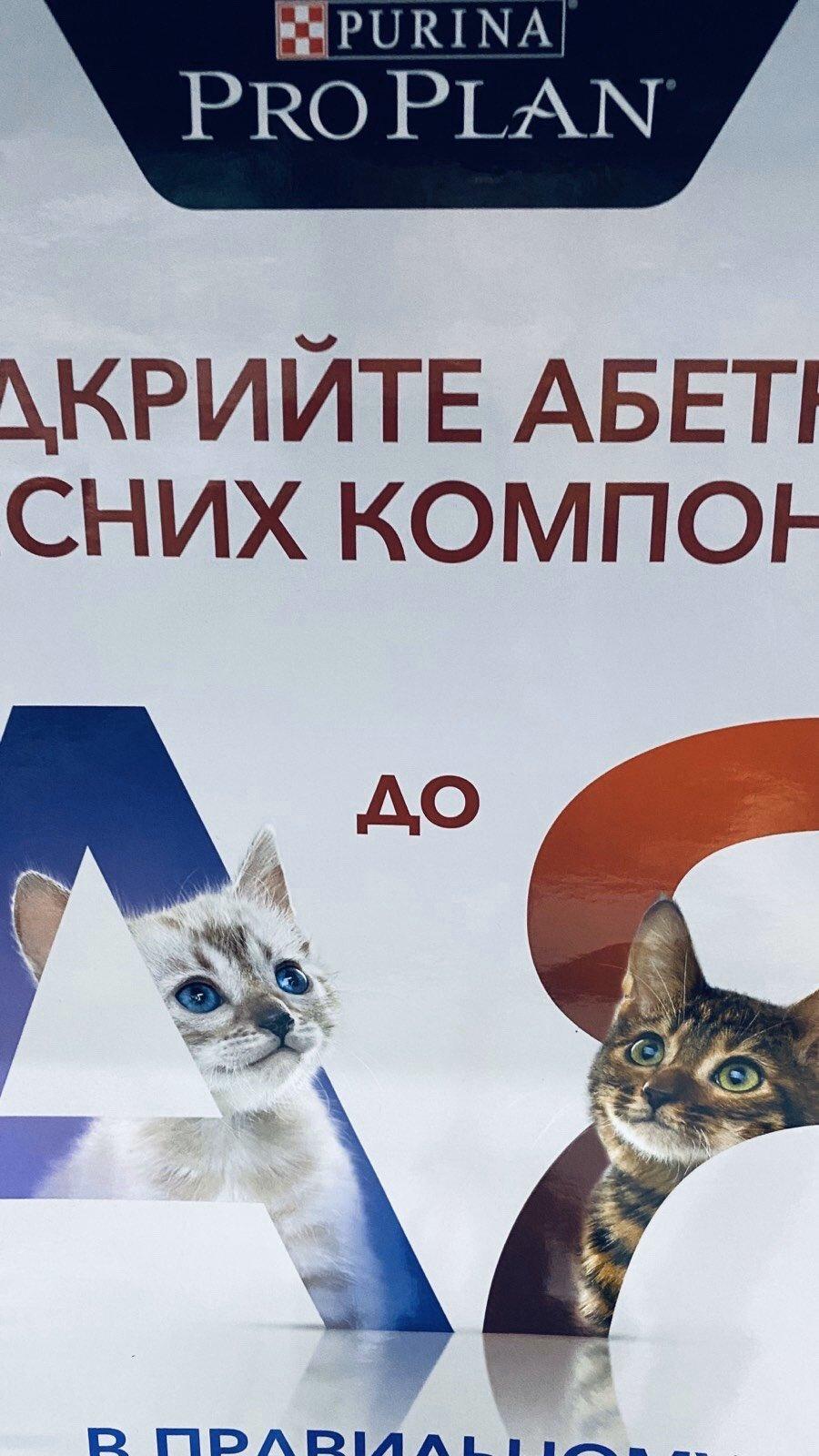 Доставка зоотоваров в Бердянске, фото-13
