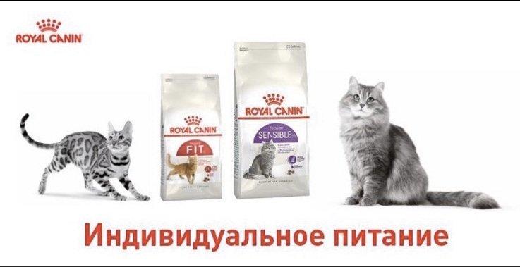 Доставка зоотоваров в Бердянске, фото-2