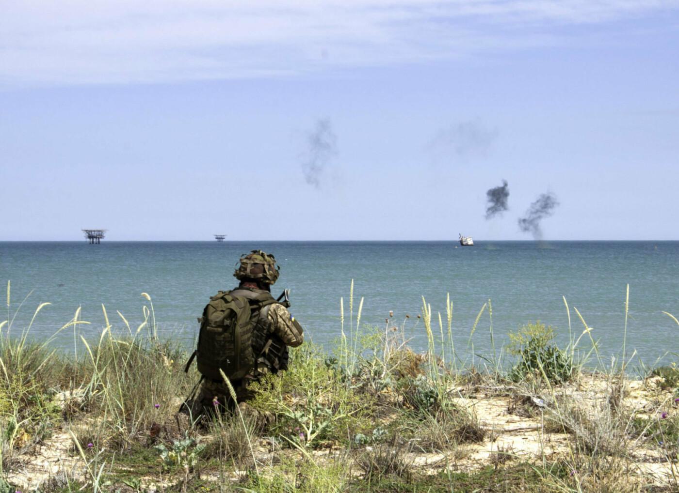 На берегу Азовського моря морпіхи проходили навчання, фото-3