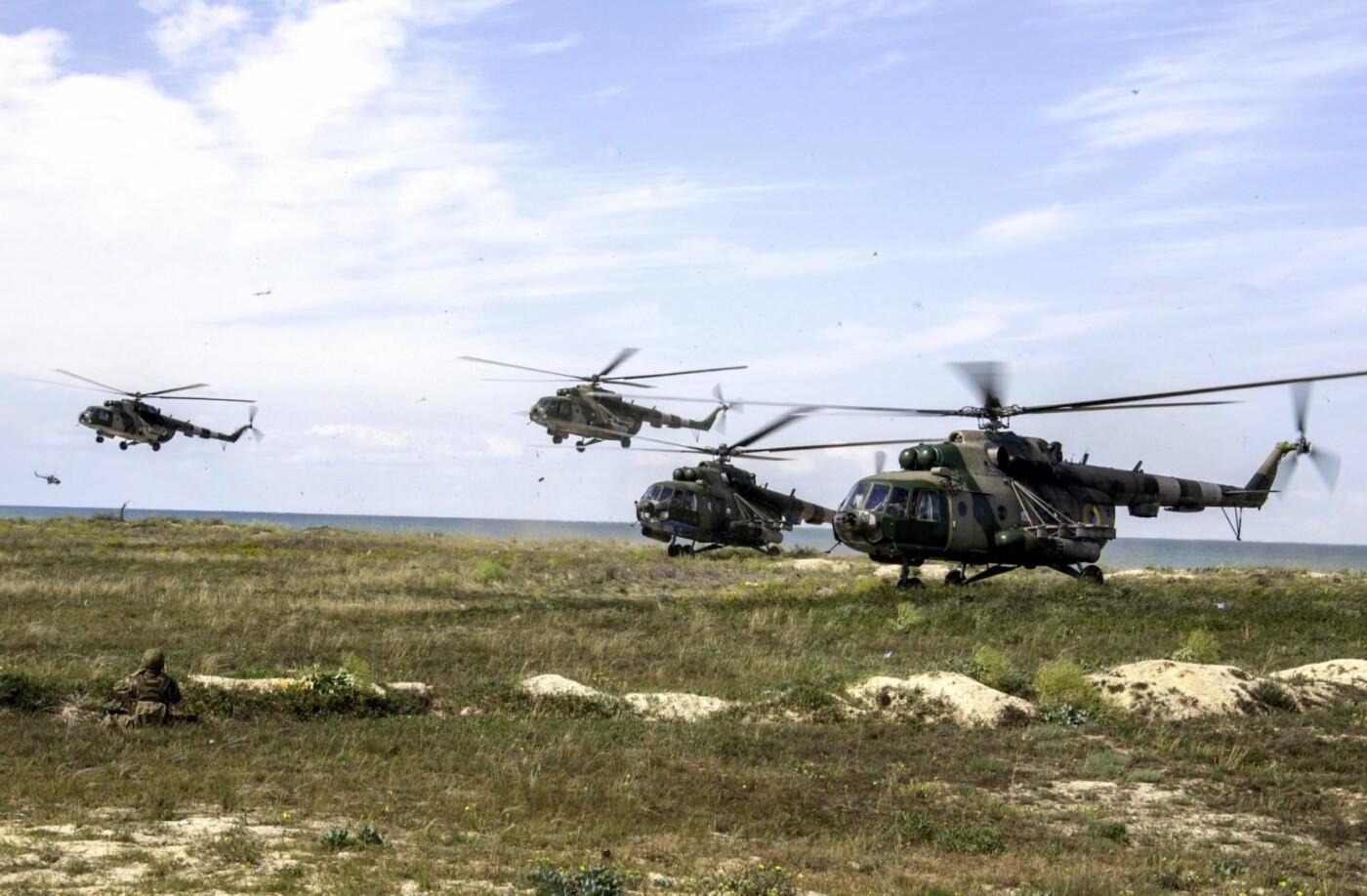 На берегу Азовського моря морпіхи проходили навчання, фото-6