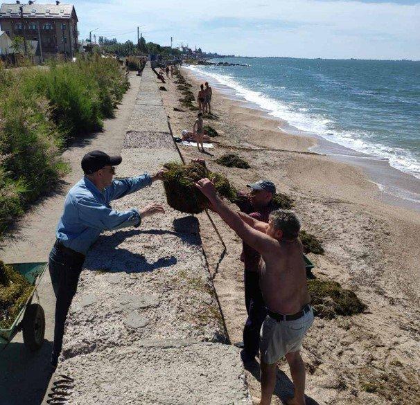 Бердянський «Екозахист Азов» прибрали пляжі Пісок, фото-3