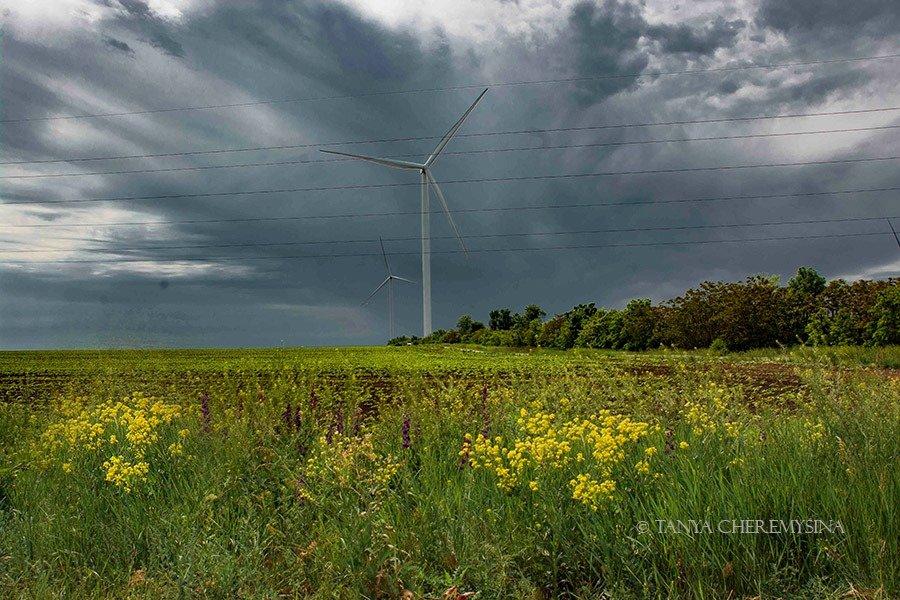 Краса природи поблизу Бердянська, - ФОТО, фото-2