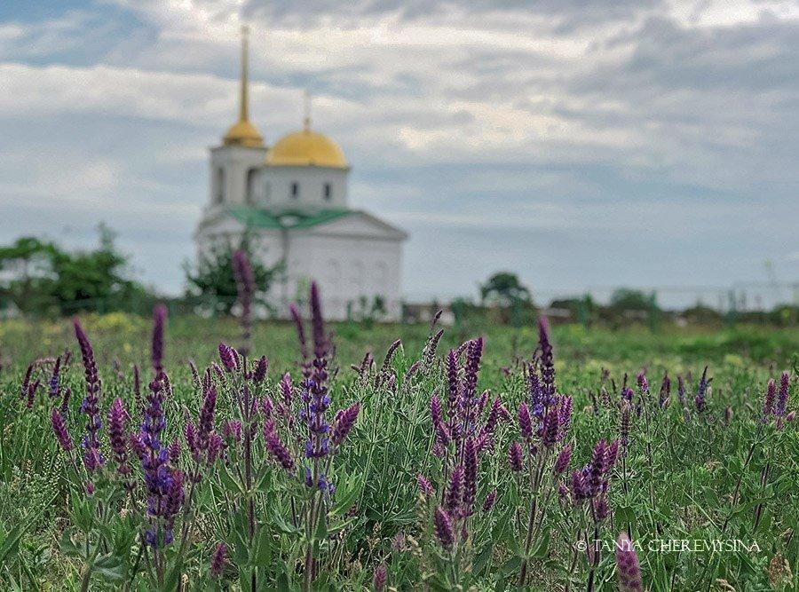 Краса природи поблизу Бердянська, - ФОТО, фото-4