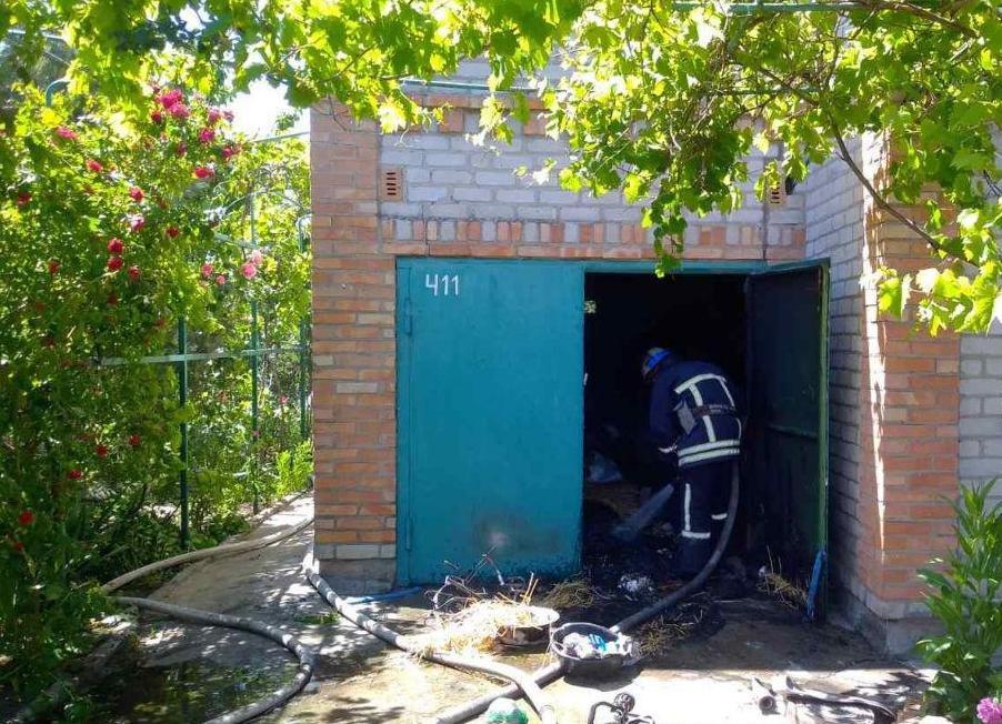В Бердянске ликвидировали пожар на дачной территории, фото-1