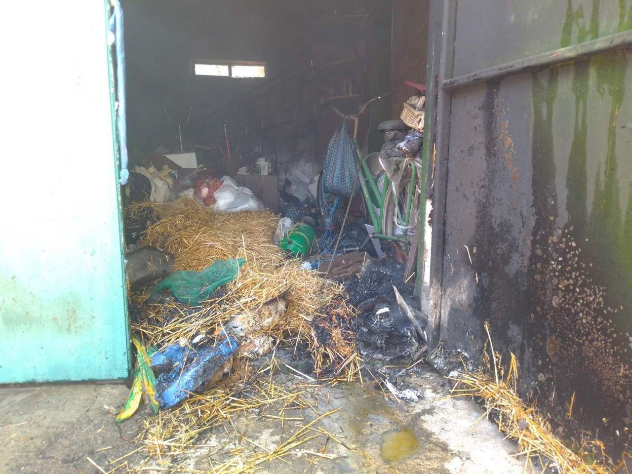 В Бердянске ликвидировали пожар на дачной территории, фото-2