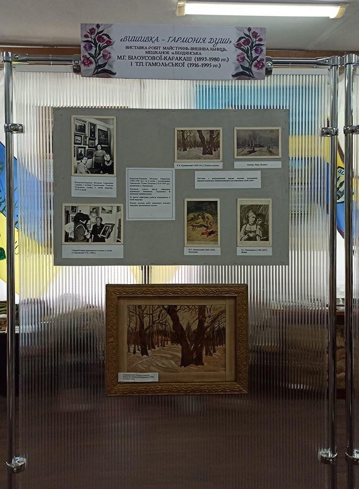 В музее Бердянска открылась выставка «Вышивка – гармония души», фото-5