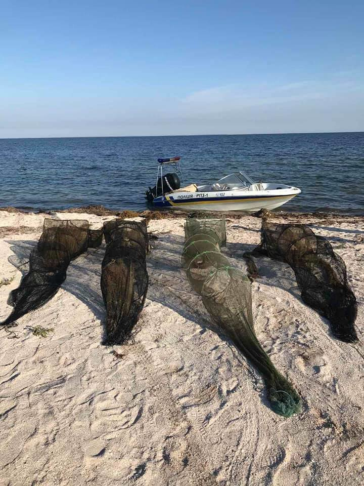 В Азовском море браконьеры ловили рыбу сетями, фото-1