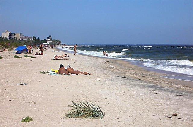 Медузы на нудистском пляже Бердянска: что важнее эстетика или безопасность?, фото-4
