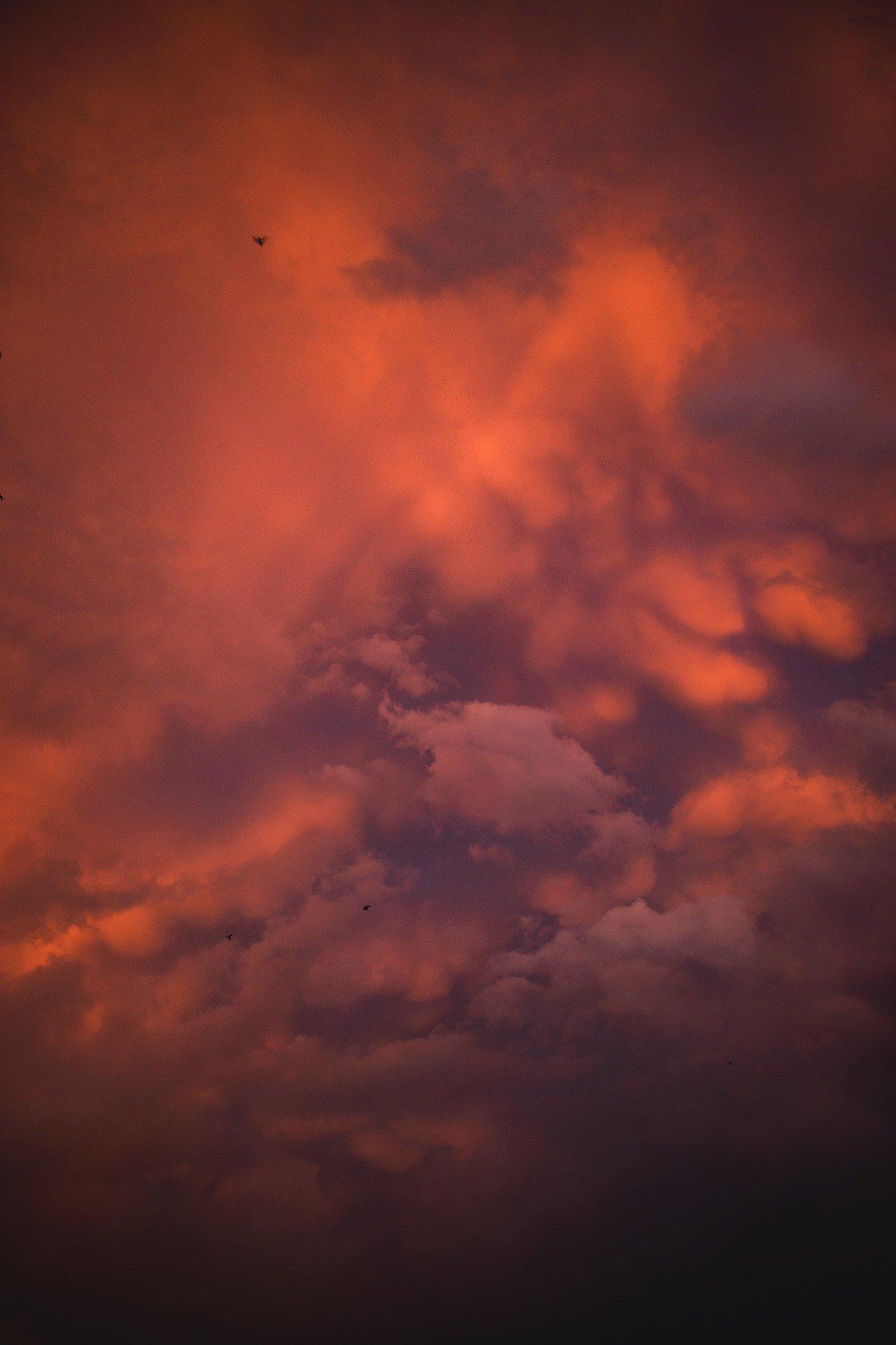 Дождливый вечер Бердянска, - ФОТО, фото-2