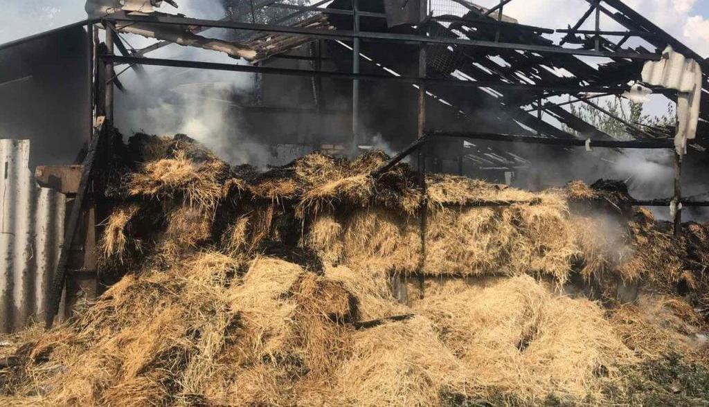 В Бердянском районе горел сеновал, фото-2
