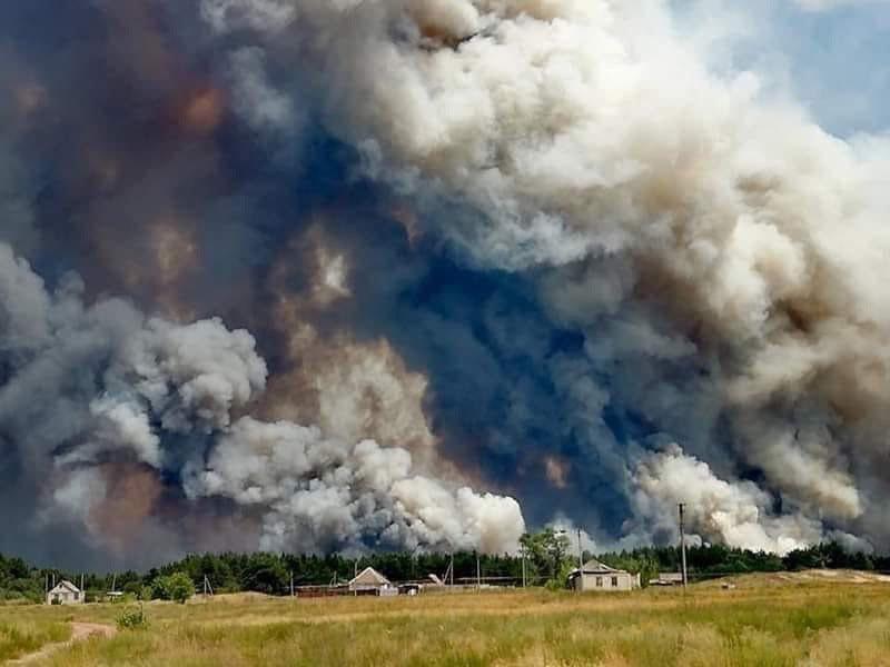 Причиной пожаров в Луганской области может быть обстрел боевиков, фото-5