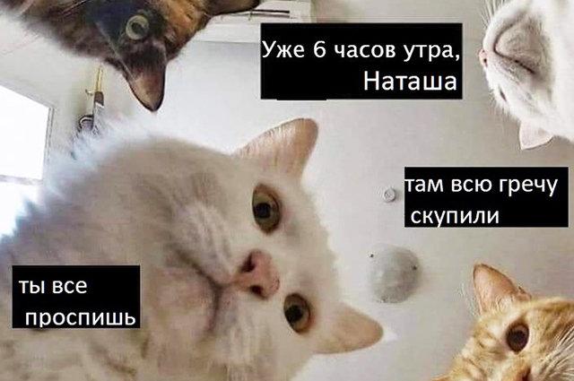 Карантин - не помеха веселью. Подборка смешных картинок о Бердянске и отдыхе 2020, фото-9