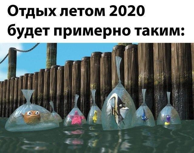 Карантин - не помеха веселью. Подборка смешных картинок о Бердянске и отдыхе 2020, фото-7