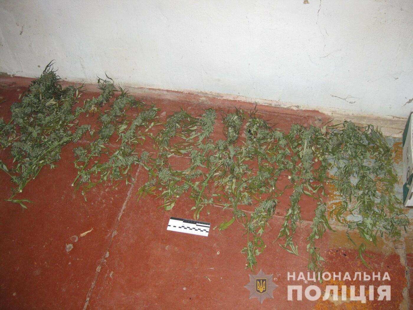 В Запорожской области полицейские разоблачили братьев-близнецов за сбыт и хранение наркотических веществ   , фото-3