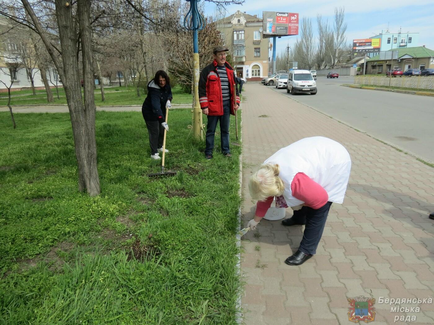 В Бердянске продолжаются субботники (ФОТО), фото-6
