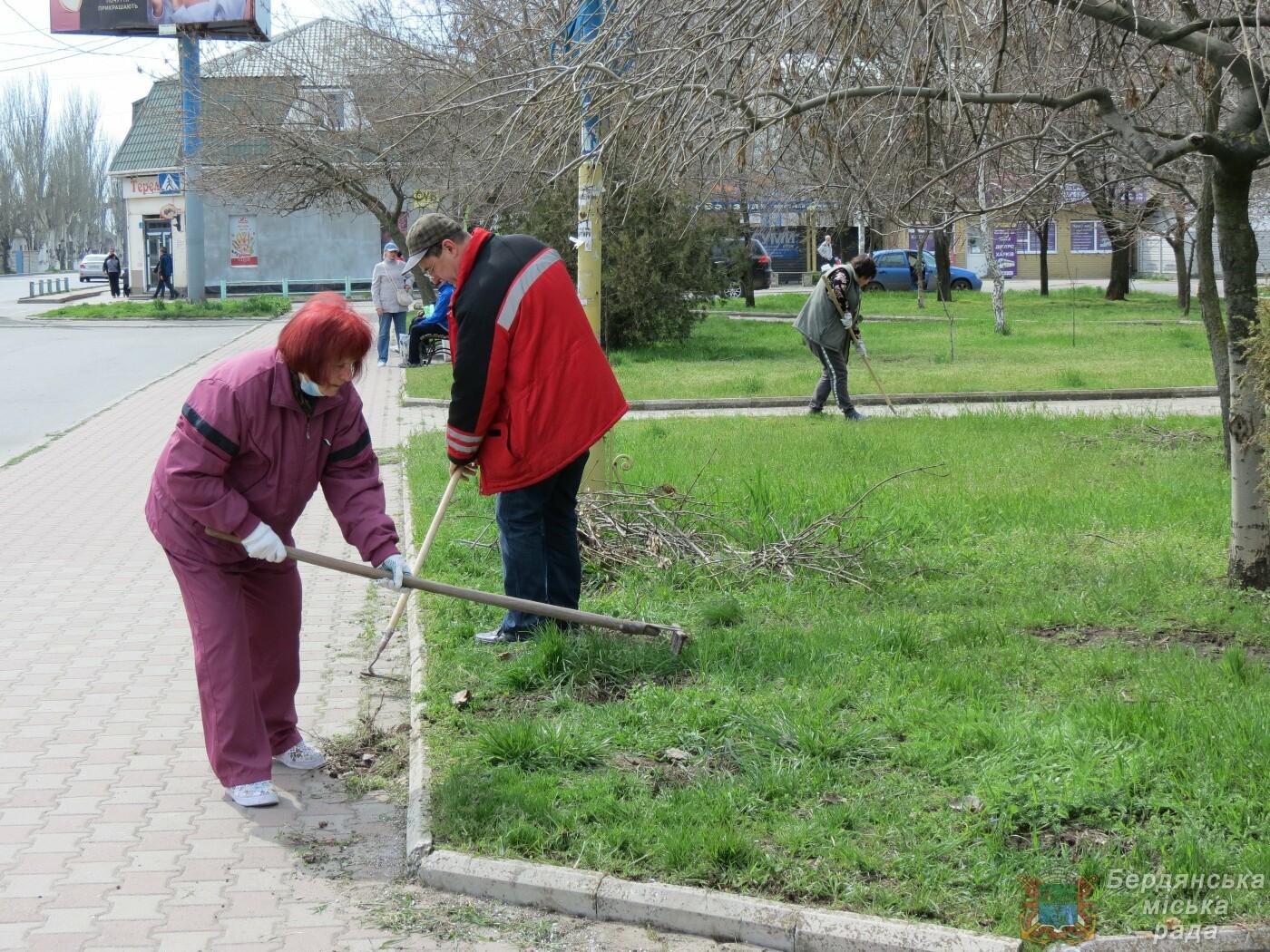В Бердянске продолжаются субботники (ФОТО), фото-7