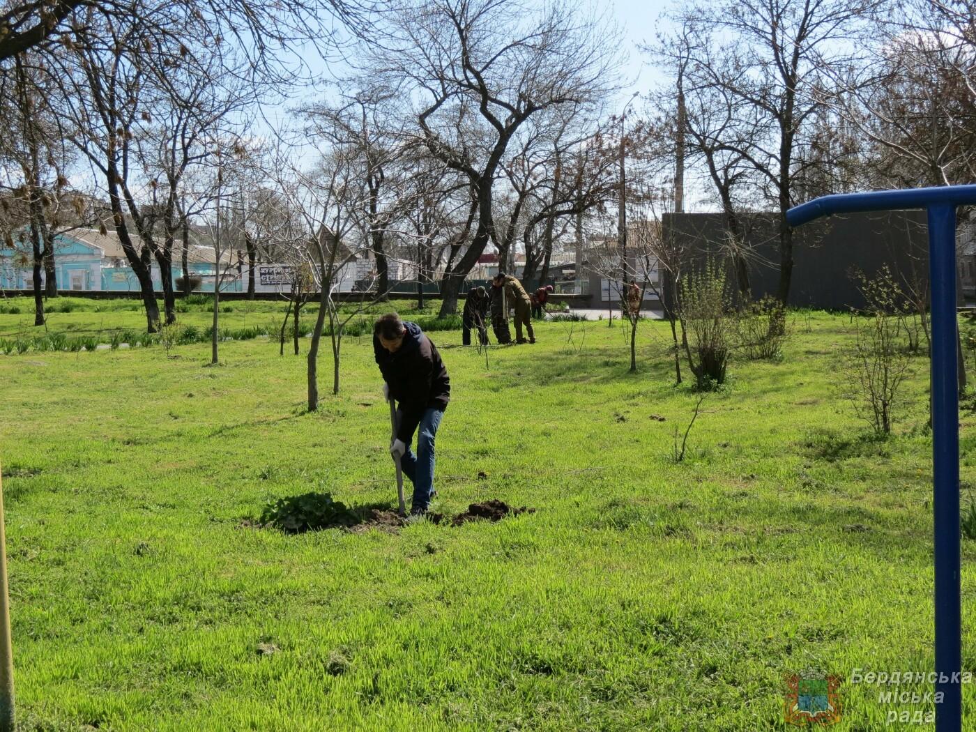 Субботники в Бердянске : фоторепортаж, фото-6