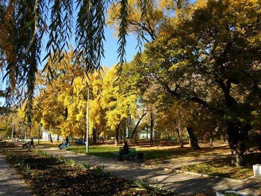 Достопримечательности Бердянска: парк Шмидта, фото-5
